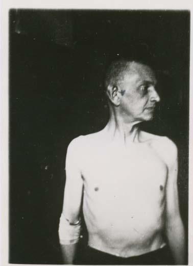 Prof. Maciej Starzewski (1891 bis 1944)